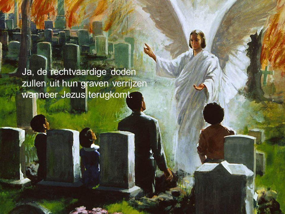 Ja, de rechtvaardige doden zullen uit hun graven verrijzen wanneer Jezus terugkomt.
