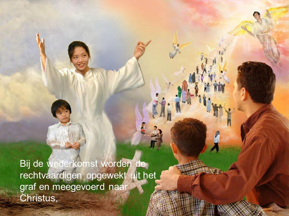 Bij de wederkomst worden de rechtvaardigen opgewekt uit het graf en meegevoerd naar Christus,
