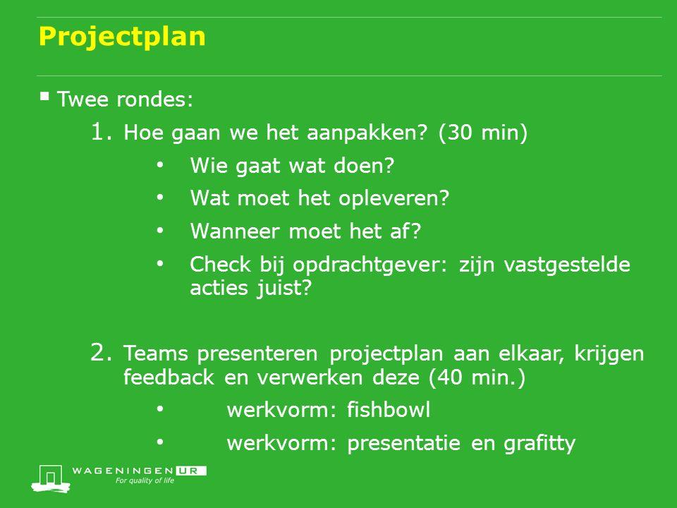 Projectplan  Twee rondes: 1. Hoe gaan we het aanpakken.