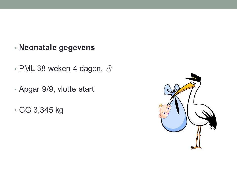 Neonatale gegevens PML 38 weken 4 dagen, ♂ Apgar 9/9, vlotte start GG 3,345 kg