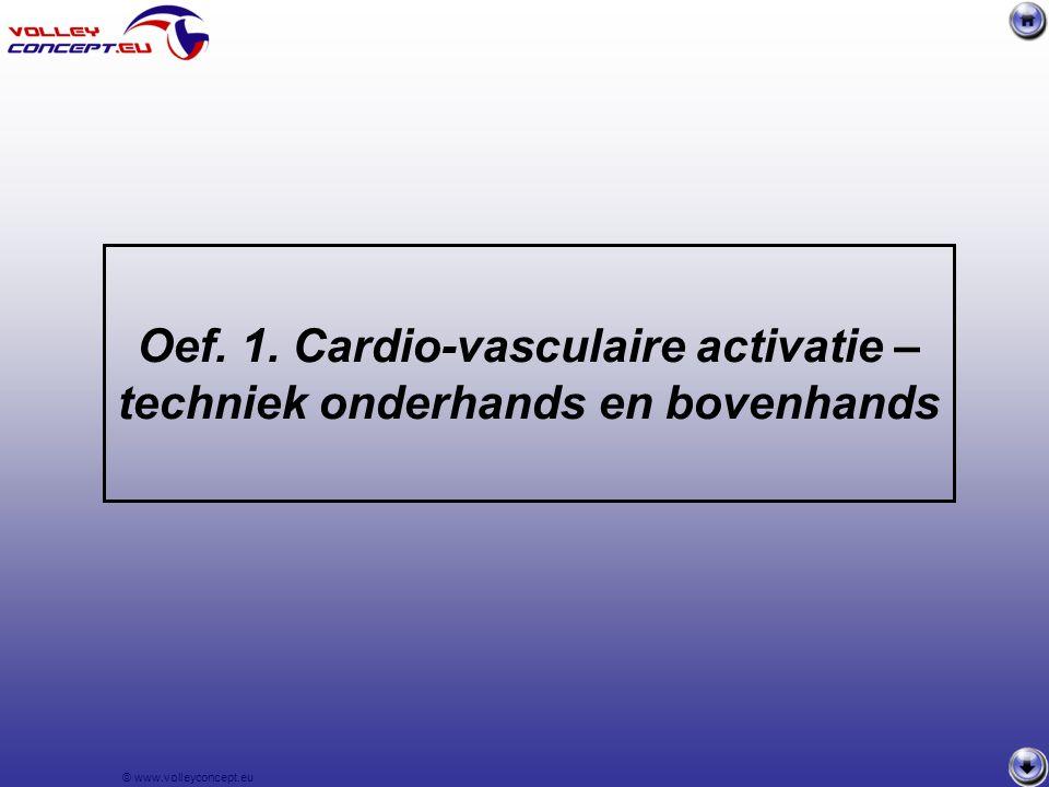 © www.volleyconcept.eu Bal terugspelen naar P1 of P2 – achterwaarts vorderen – rond kegels lopen en aansluiten overzijde Wie een fout maakt, doet een schuifduik.