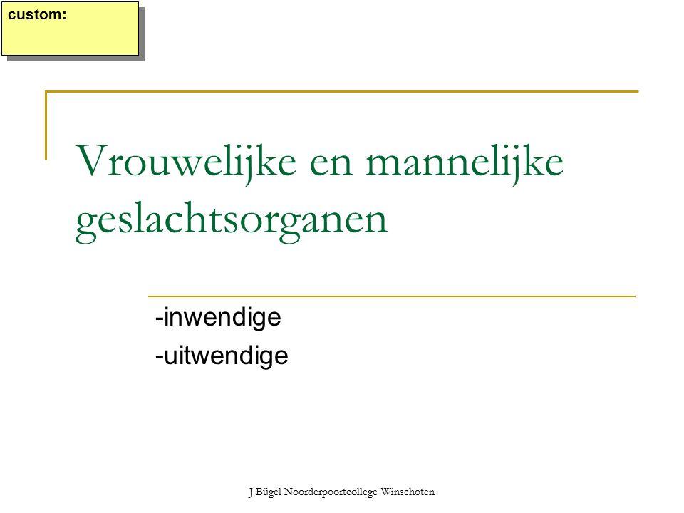 J Bügel Noorderpoortcollege Winschoten Vrouwelijke en mannelijke geslachtsorganen -inwendige -uitwendige custom: