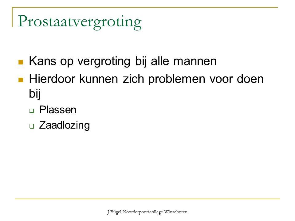 J Bügel Noorderpoortcollege Winschoten Prostaatvergroting Kans op vergroting bij alle mannen Hierdoor kunnen zich problemen voor doen bij  Plassen  Zaadlozing