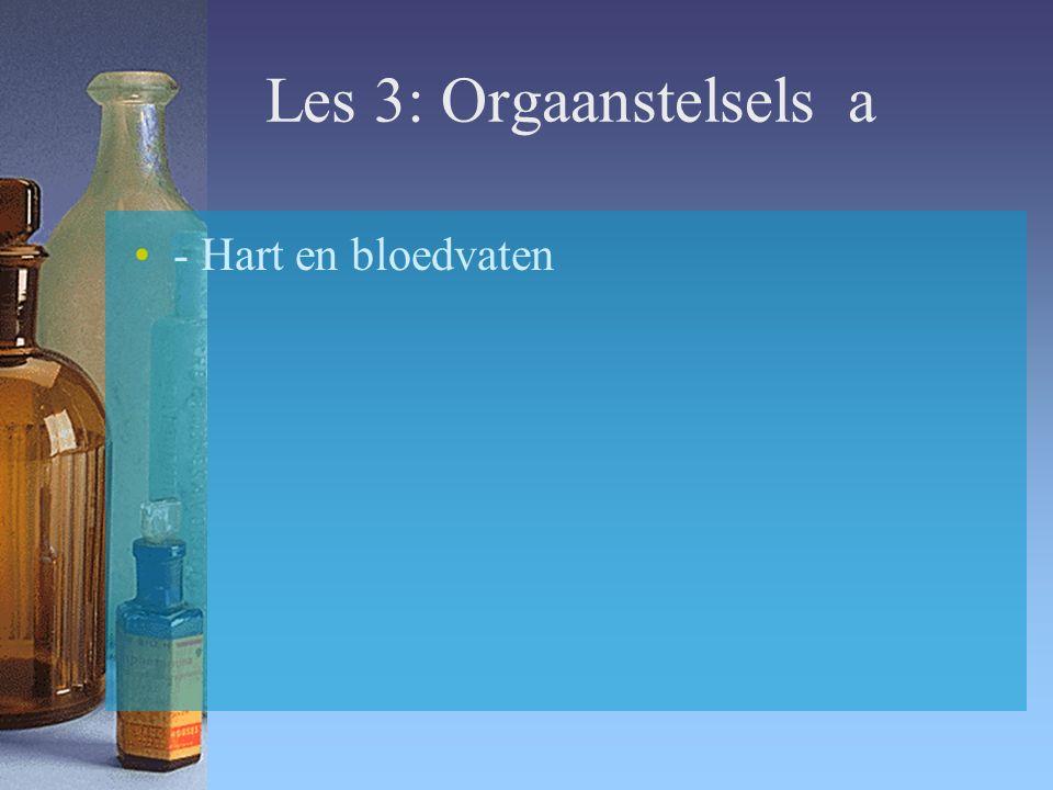Les 3: Orgaanstelsels a - Hart en bloedvaten