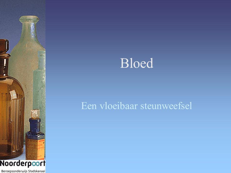 Bloed Een vloeibaar steunweefsel