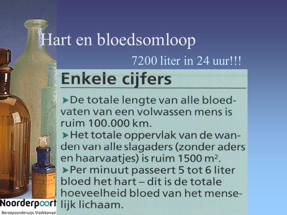 Hart en bloedsomloop 7200 liter in 24 uur!!!