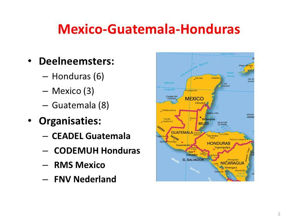 Mexico-Guatemala-Honduras Deelneemsters: – Honduras (6) – Mexico (3) – Guatemala (8) Organisaties: – CEADEL Guatemala – CODEMUH Honduras – RMS Mexico – FNV Nederland 2