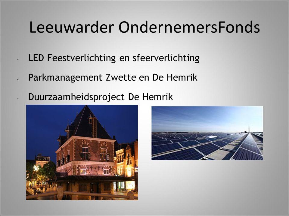 Leeuwarder OndernemersFonds LED Feestverlichting en sfeerverlichting Parkmanagement Zwette en De Hemrik Duurzaamheidsproject De Hemrik