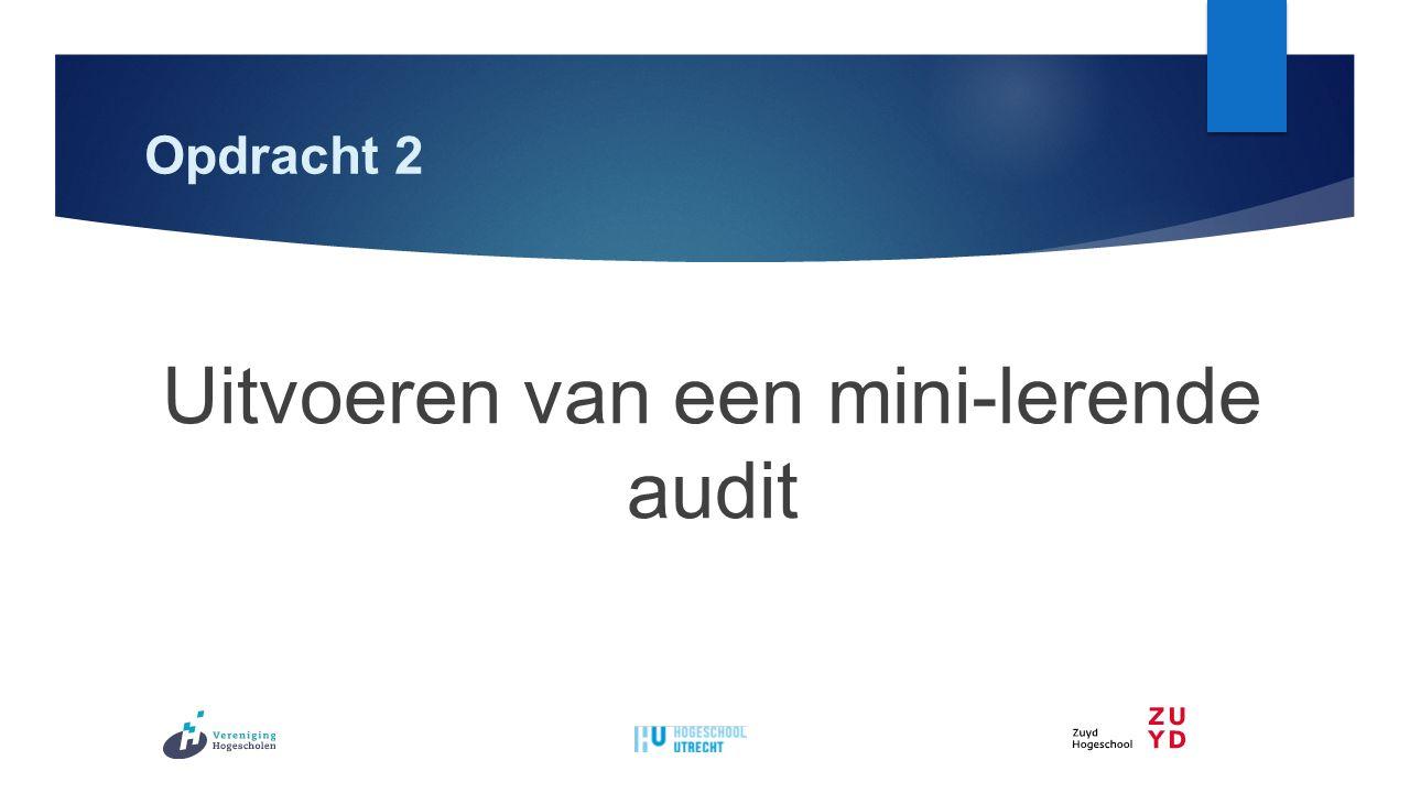 Opdracht 2 Uitvoeren van een mini-lerende audit