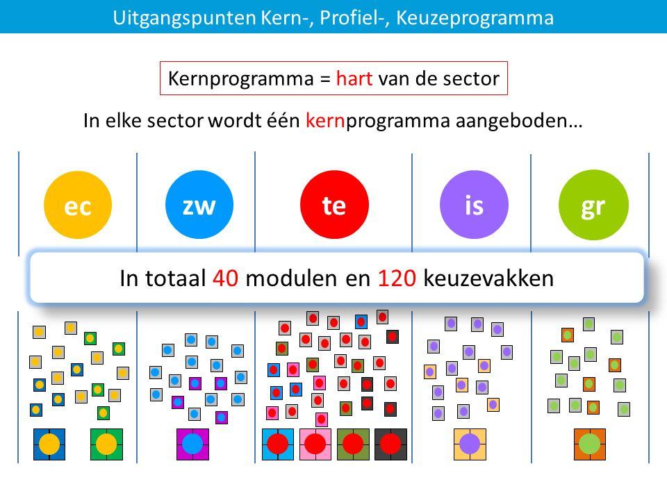 istezw Uitgangspunten Kern-, Profiel-, Keuzeprogramma In elke sector wordt één kernprogramma aangeboden… ec … altijd in combinatie met profielmodulen- en keuzevakken Kernprogramma = hart van de sector gr In totaal 40 modulen en 120 keuzevakken