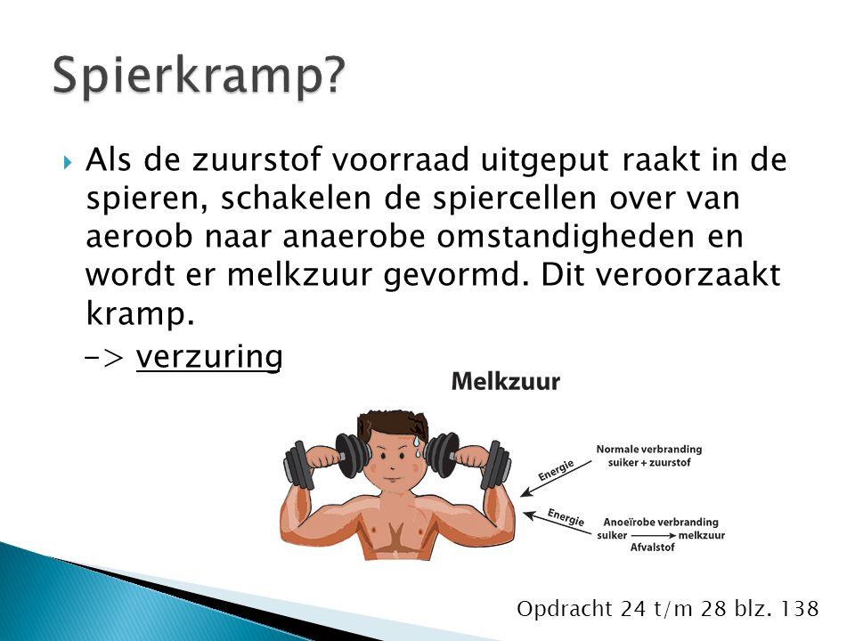  Als de zuurstof voorraad uitgeput raakt in de spieren, schakelen de spiercellen over van aeroob naar anaerobe omstandigheden en wordt er melkzuur gevormd.