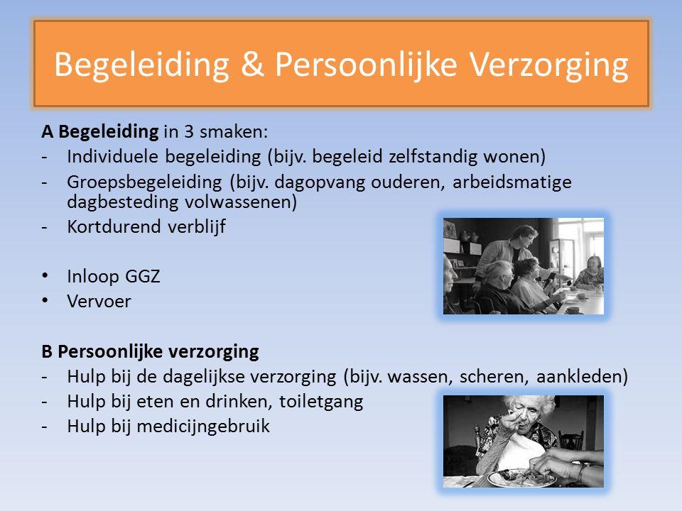 Begeleiding & Persoonlijke Verzorging A Begeleiding in 3 smaken: -Individuele begeleiding (bijv.