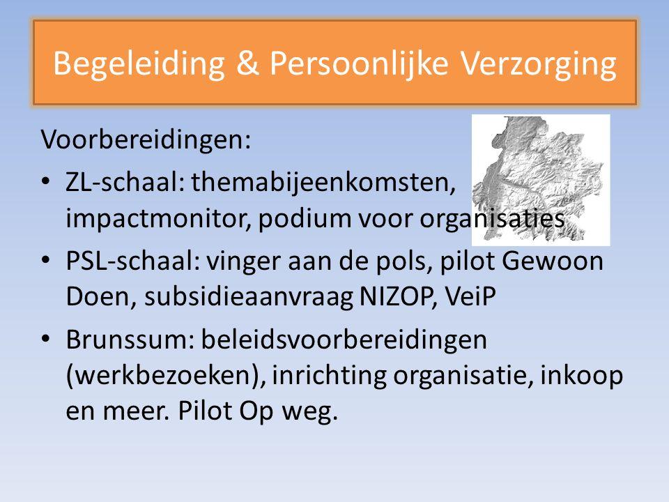 Begeleiding & Persoonlijke Verzorging Voorbereidingen: ZL-schaal: themabijeenkomsten, impactmonitor, podium voor organisaties PSL-schaal: vinger aan de pols, pilot Gewoon Doen, subsidieaanvraag NIZOP, VeiP Brunssum: beleidsvoorbereidingen (werkbezoeken), inrichting organisatie, inkoop en meer.