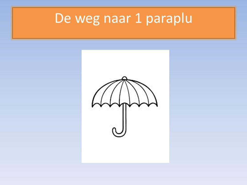 De weg naar 1 paraplu