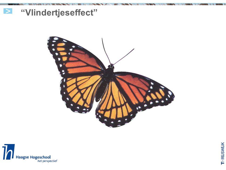 Vlindertjeseffect