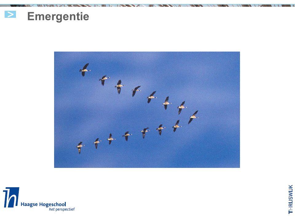 Emergentie