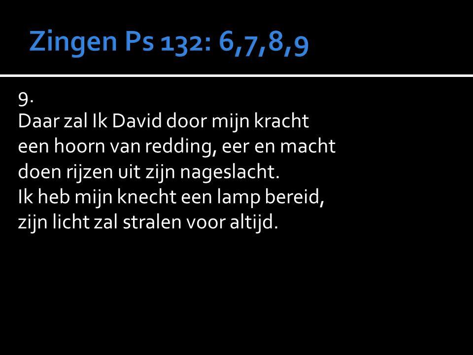 9. Daar zal Ik David door mijn kracht een hoorn van redding, eer en macht doen rijzen uit zijn nageslacht. Ik heb mijn knecht een lamp bereid, zijn li