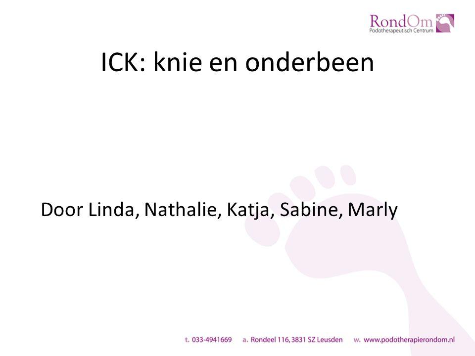 ICK: knie en onderbeen Door Linda, Nathalie, Katja, Sabine, Marly