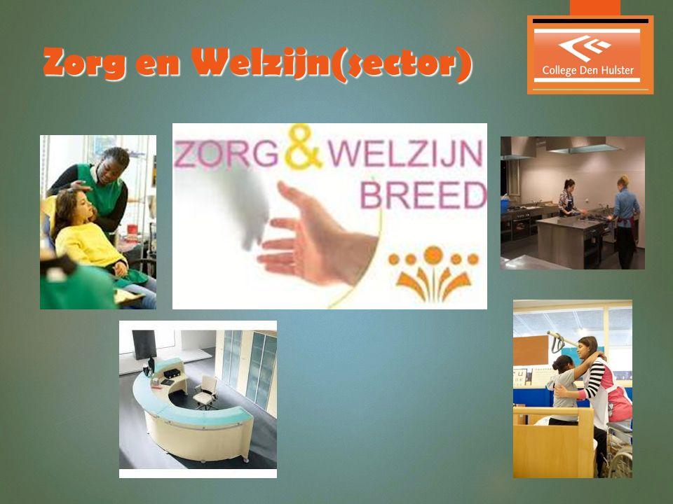 Zorg en Welzijn(sector)