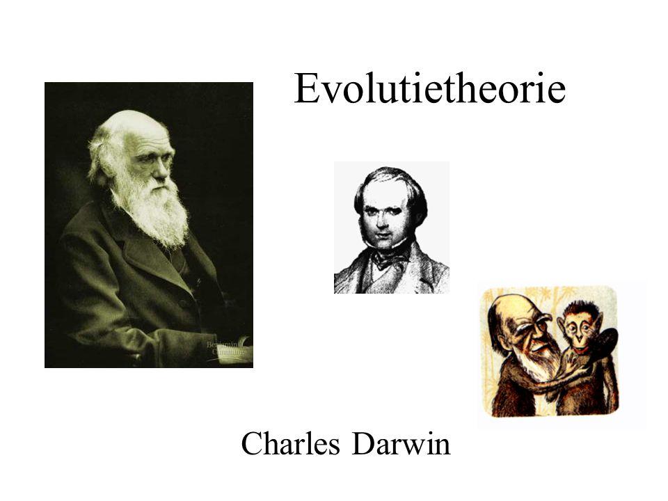 Charles Darwin Evolutietheorie