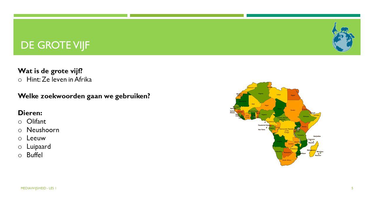 DE GROTE VIJF Wat is de grote vijf? o Hint: Ze leven in Afrika Welke zoekwoorden gaan we gebruiken? Dieren: o Olifant o Neushoorn o Leeuw o Luipaard o