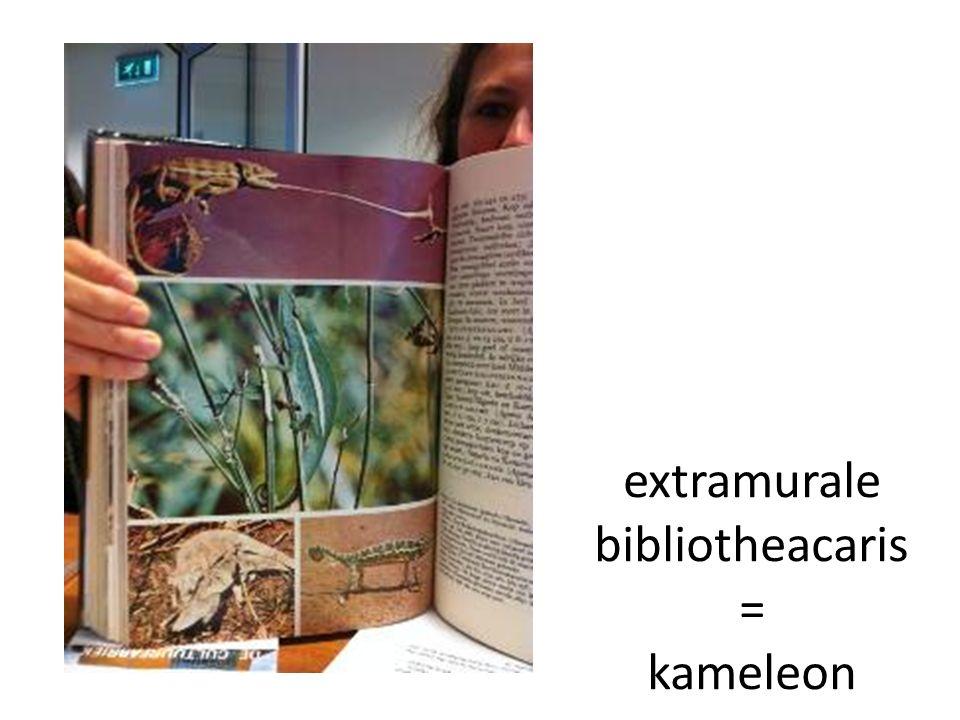 extramurale bibliotheacaris = kameleon