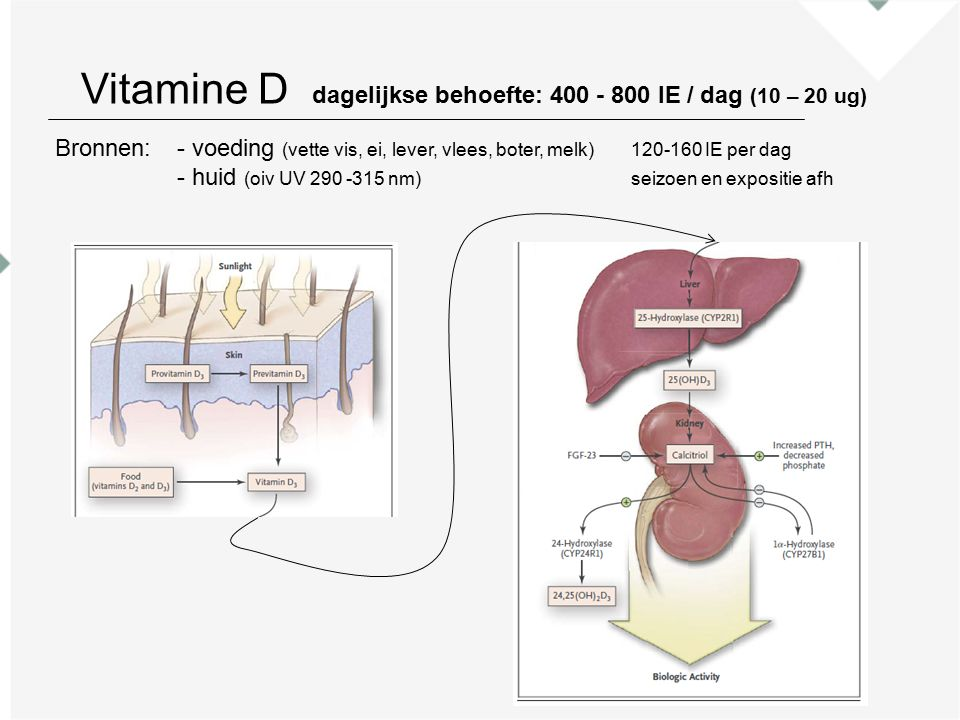 Bronnen:- voeding (vette vis, ei, lever, vlees, boter, melk)120-160 IE per dag - huid (oiv UV 290 -315 nm)seizoen en expositie afh Vitamine D dagelijkse behoefte: 400 - 800 IE / dag (10 – 20 ug)