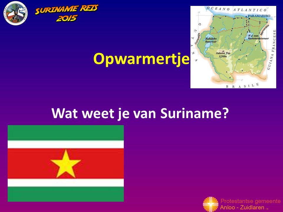 Opwarmertje Wat weet je van Suriname