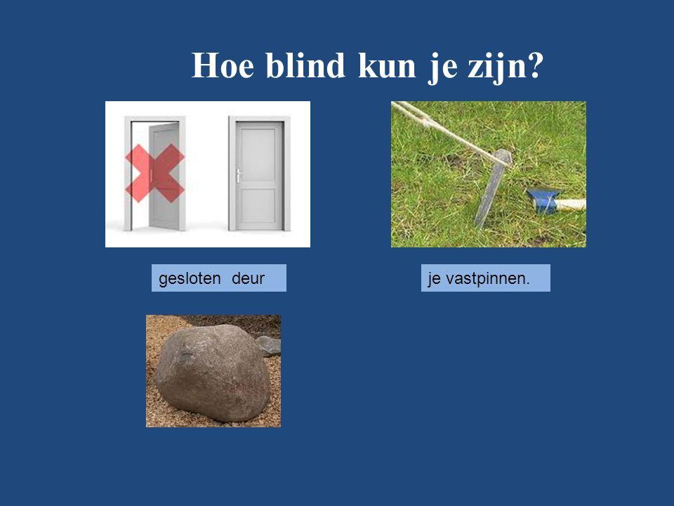 Hoe blind kun je zijn gesloten deurje vastpinnen.