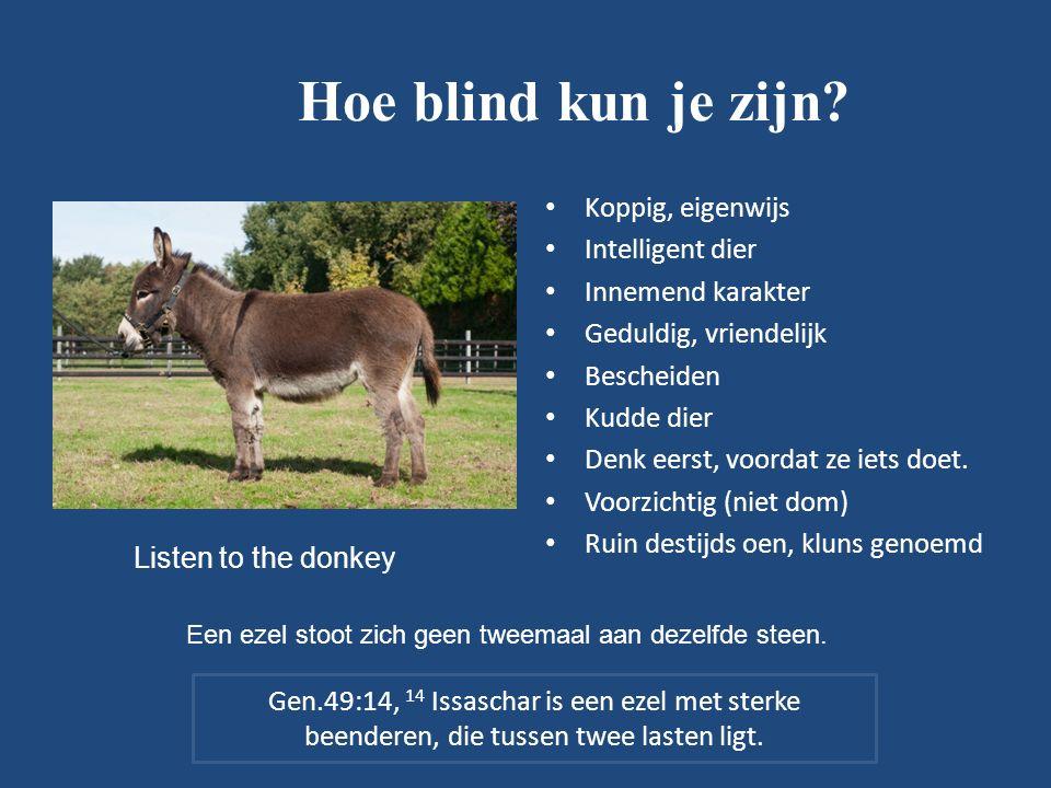 Hoe blind kun je zijn.