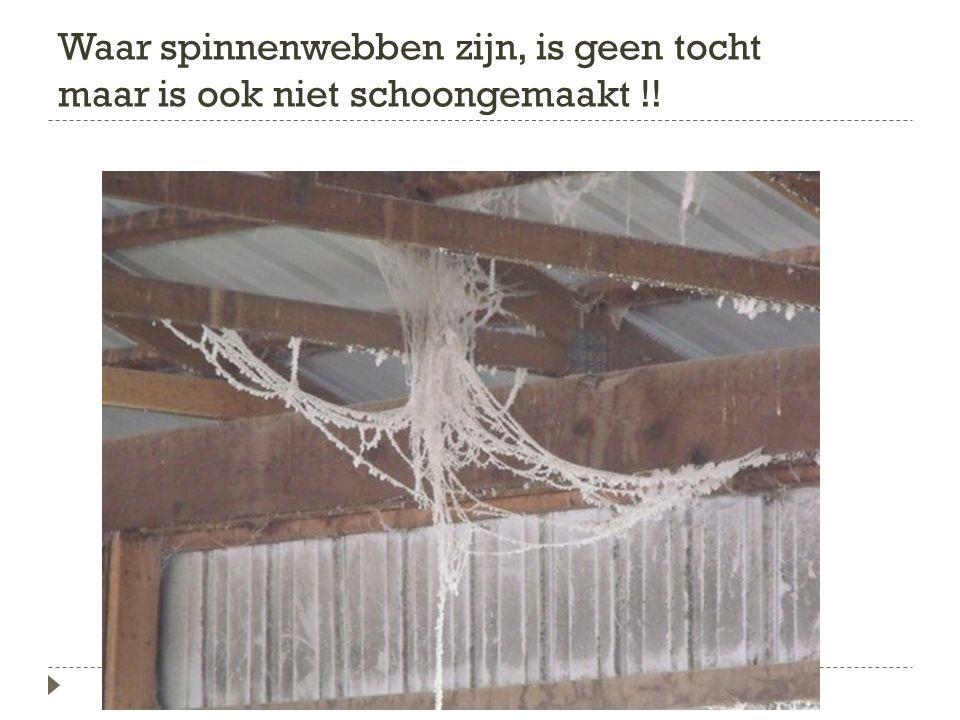 Waar spinnenwebben zijn, is geen tocht maar is ook niet schoongemaakt !!