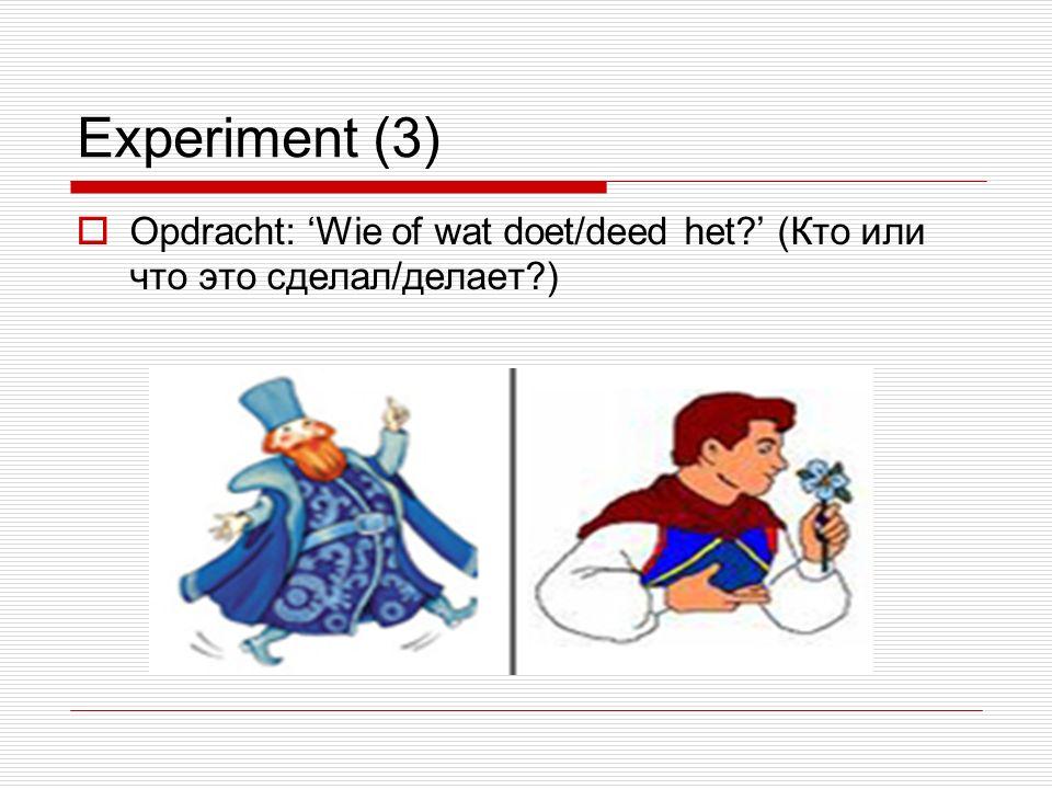 Experiment (3)  Opdracht: 'Wie of wat doet/deed het ' (Кто или что это сделал/делает )