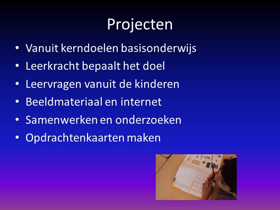 Projecten Vanuit kerndoelen basisonderwijs Leerkracht bepaalt het doel Leervragen vanuit de kinderen Beeldmateriaal en internet Samenwerken en onderzo