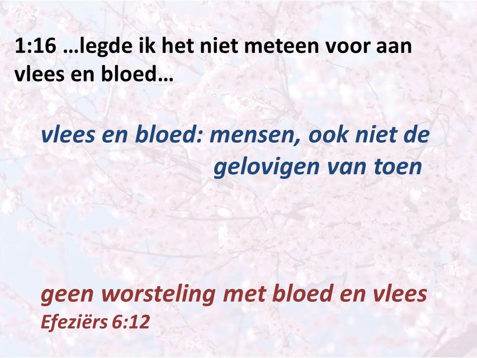 1:16 …legde ik het niet meteen voor aan vlees en bloed… vlees en bloed: mensen, ook niet de gelovigen van toen geen worsteling met bloed en vlees Efez