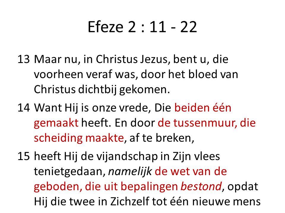 Efeze 2 : 11 - 22 13Maar nu, in Christus Jezus, bent u, die voorheen veraf was, door het bloed van Christus dichtbij gekomen. 14Want Hij is onze vrede
