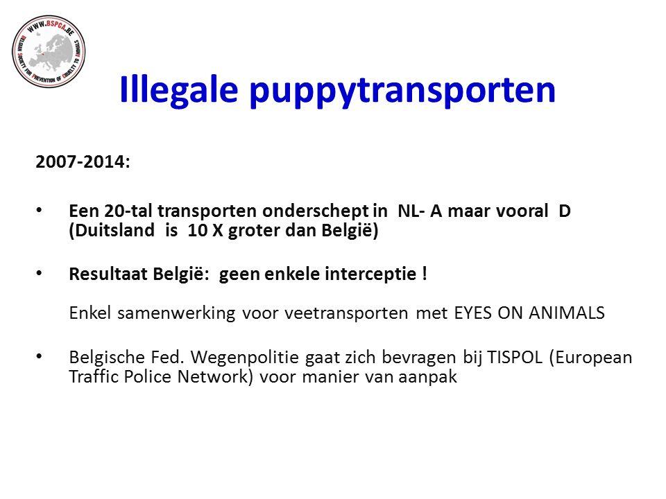 Illegale puppytransporten 2007-2014: Een 20-tal transporten onderschept in NL- A maar vooral D (Duitsland is 10 X groter dan België) Resultaat België: geen enkele interceptie .