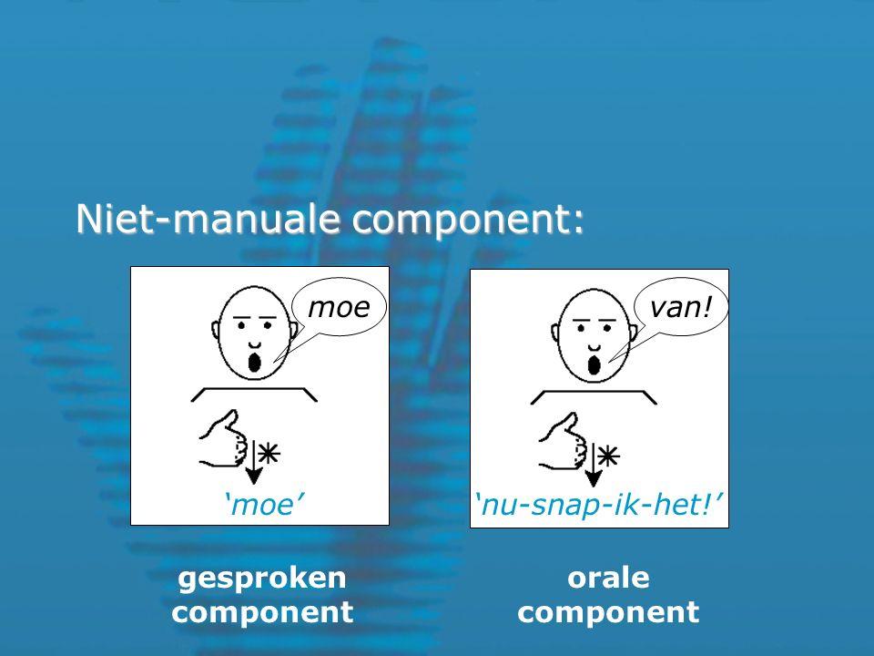 Niet-manuale component: gesproken component orale component 'moe''nu-snap-ik-het!' van!moe