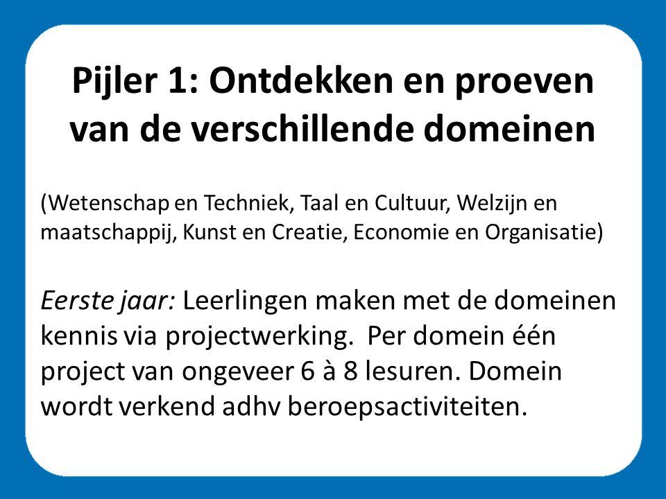 Pijler 1: Ontdekken en proeven van de verschillende domeinen (Wetenschap en Techniek, Taal en Cultuur, Welzijn en maatschappij, Kunst en Creatie, Economie en Organisatie) Eerste jaar: Leerlingen maken met de domeinen kennis via projectwerking.