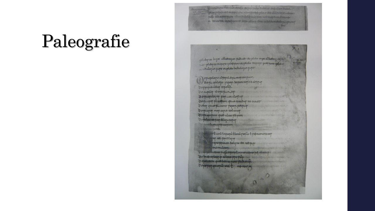 Paleografie