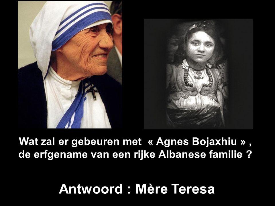 Wat zal er gebeuren met « Agnes Bojaxhiu », de erfgename van een rijke Albanese familie .