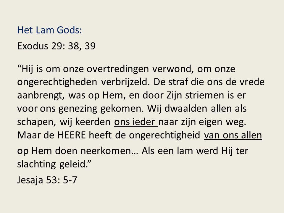 Het Lam Gods: Exodus 29: 38, 39 Hij is om onze overtredingen verwond, om onze ongerechtigheden verbrijzeld.