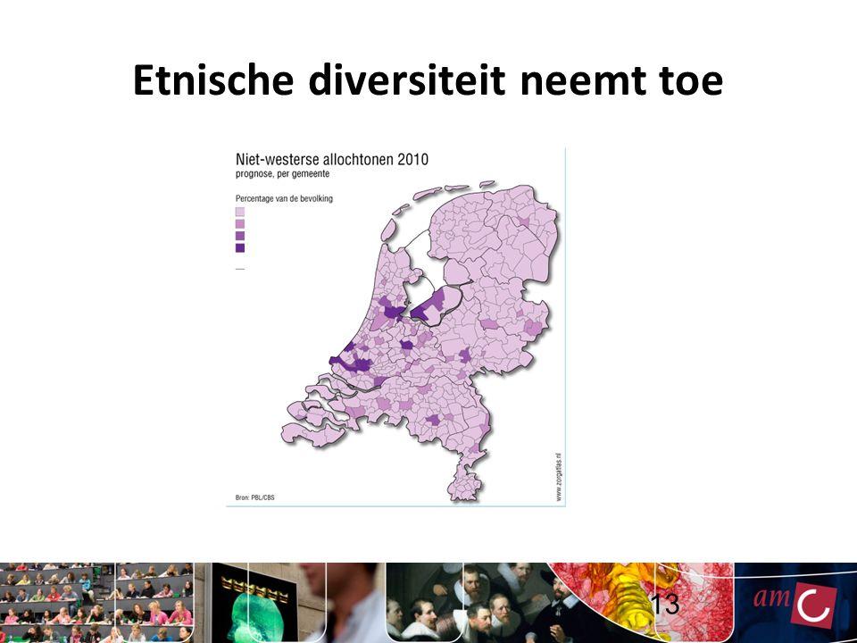 Etnische diversiteit neemt toe 13