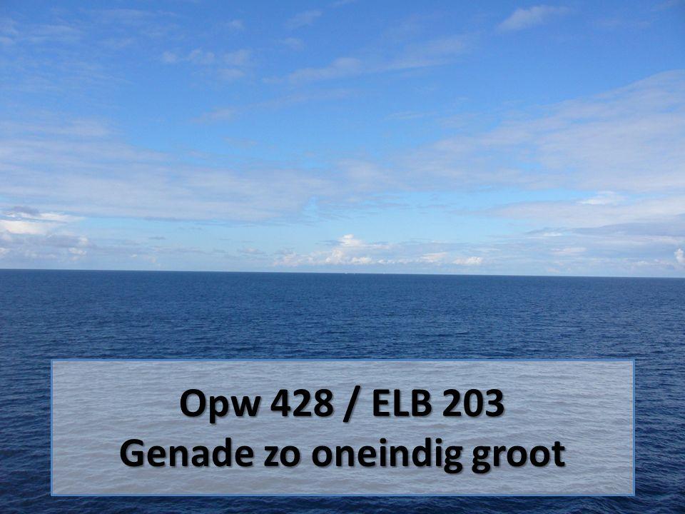 Opw 428 / ELB 203 Genade zo oneindig groot