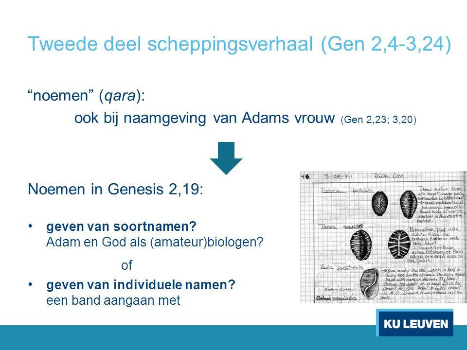 Tweede deel scheppingsverhaal (Gen 2,4-3,24) noemen (qara): ook bij naamgeving van Adams vrouw (Gen 2,23; 3,20) Noemen in Genesis 2,19: geven van soortnamen.