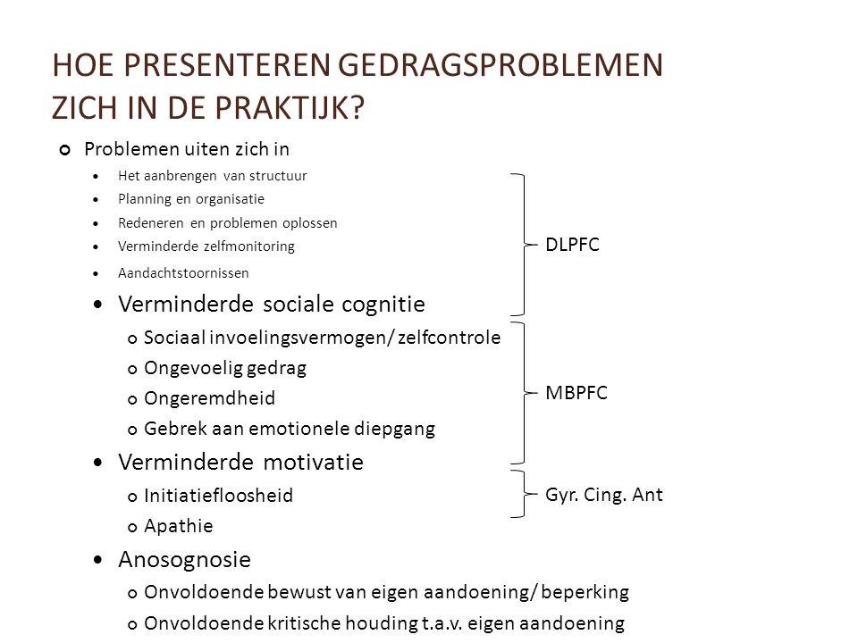 HOE PRESENTEREN GEDRAGSPROBLEMEN ZICH IN DE PRAKTIJK? Problemen uiten zich in Het aanbrengen van structuur Planning en organisatie Redeneren en proble