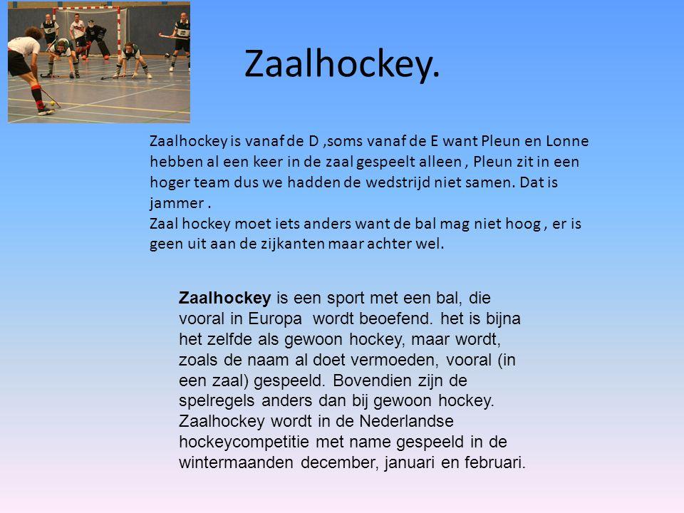 ijshockey. ijs hockey is bijna het zelfde als hockey.
