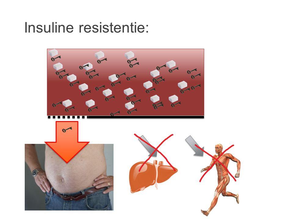 Insuline resistentie: