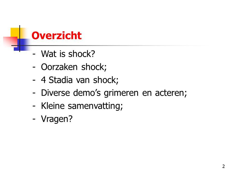 2 Overzicht -Wat is shock? -Oorzaken shock; -4 Stadia van shock; -Diverse demo's grimeren en acteren; -Kleine samenvatting; -Vragen?