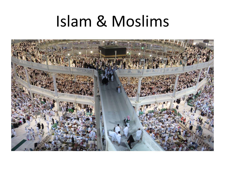 Islam & Moslims