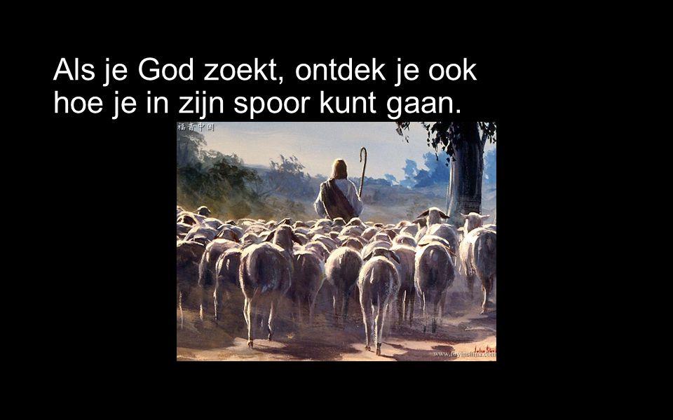 Als je God zoekt, ontdek je ook hoe je in zijn spoor kunt gaan.